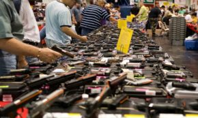 Why Has There Been No Legislative Action on Guns? Blame the Silent Majority.