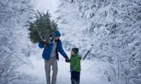 How to Win at Co-Parenting During the Holidays
