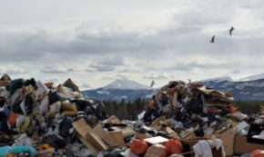 REFUSE: The First Step to Zero Waste