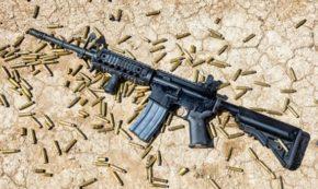 Gun Control: What SHOULD We Do?