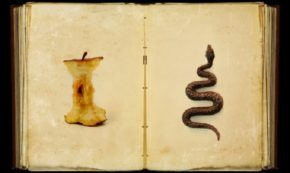 Seven Modern Deadly Sins