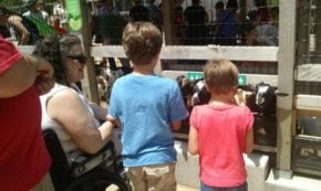 The Zoo From my View in a Wheelchair: Grateful I Raised my son to be a Good Man