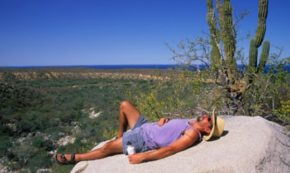 Men and the Power of Vitamin D