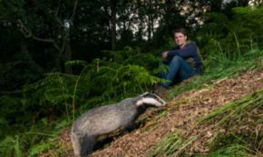 Why I Lived Like a Badger, an Otter, a Deer and a Swift
