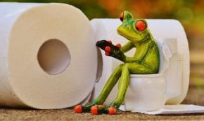 How to Stop Diarrhea: Diet Changes and Natural Remedies