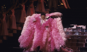 Liberace on Peacocking and Politics