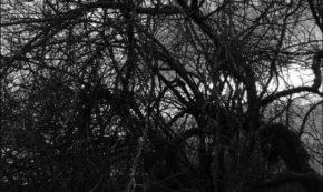 Dark Night of the Soul: Going Dark to Feel the Light