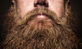 The Beardview