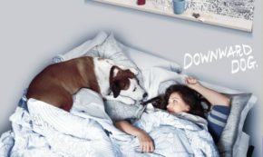 A Decision is Made this Week on 'Downward Dog' Boundaries