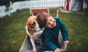 5 Reasons All Kids Need a Dog: A Call for Submission