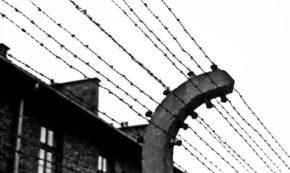 Persecution: After Auschwitz