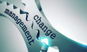 How to Manage Change in 13 Steps