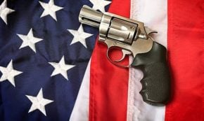 How the US Government Created and Coddled the GunIndustry