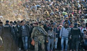 A Former Medic's Unpopular Opinion On The Refugee Crisis