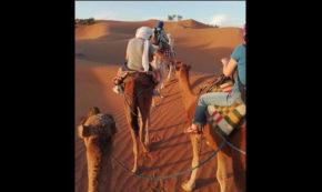 Deeper into the Desert