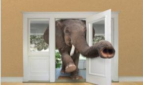 Part II #MeToo Elephant in the Room: Sex