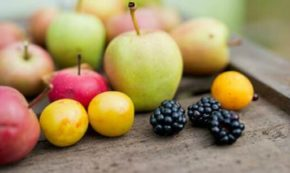 The Modified FODMAP Diet: Your Guide After Reintroduction