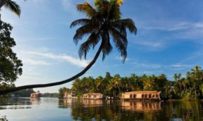 Trip To Kerala – Reasons To Visit This Amazing Place