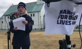 Man With Knife Disrupts March for Our Lives Rally in Iceland {VIDEO}
