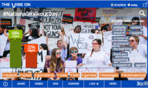 Standing Up for High School Walkout Movement