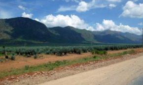 Hitch Hiking in Tanzania – Part III