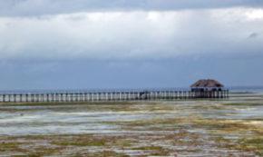 Hitch Hiking in Zanzibar – Part III