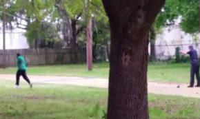The Tree Dividing Us