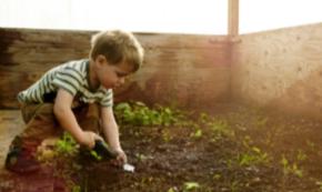 Gardening for Motor Skills Development and Retention