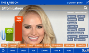 Tomi Lahren: Lost in Translation on Twitter
