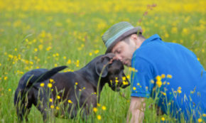 A Friend, a Dog, and a Death