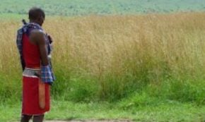 The Way of the Maasai… Sort of
