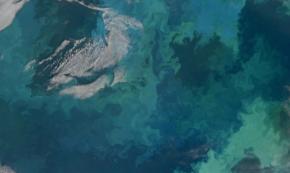 Ocean Fertilization as a Form of Carbon Sequestration