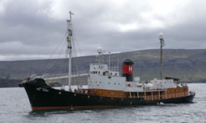 Whale Hunting to Begin Again in Iceland