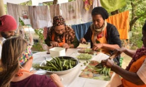 Growing a Resilient & Regenerative Future in Kenya – A Permaculture Story