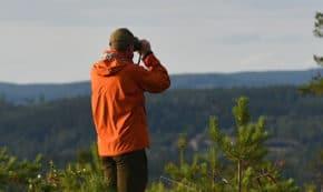 Human Health Benefits of Trees