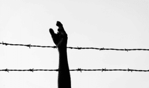 Detention Camps or Concentration Camps? What Is Happening in America?