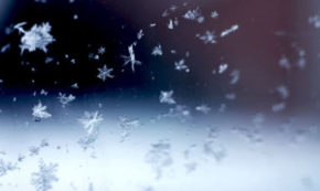 Why We're all Fragile Snowflakes