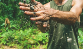 Going Off-Road for Sustainability, Equity, and Health