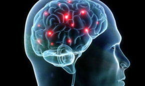 Taming Your Brain Through Mindfulness