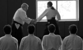 The Meaningfulness of Sensei