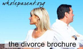 divorce brochure for dads