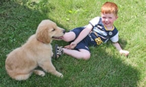 A Boy and His Dog: Finding Strengths and the Capacity To Love Through Grief and Loss