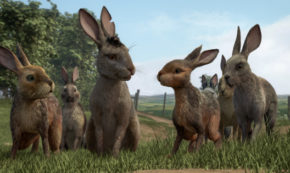 watership down, animated, fantasy, james mcavoy, nicholas hoult, miniseries, review, bbc one, netflix