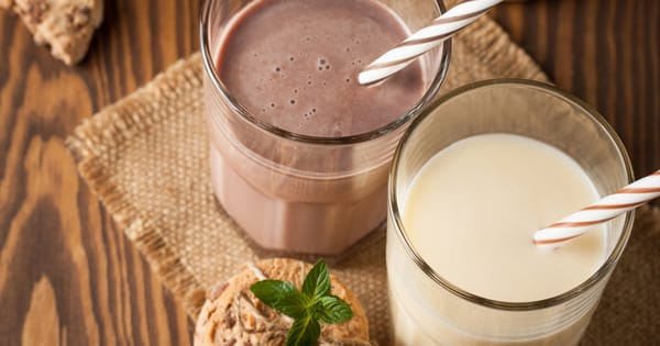 310 Shake Review Do These Meal Replacement Shakes Really Work