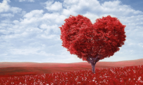 11 Love Quotes Straight from the Heart