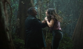 darkness on the edge of town, swamp thing, tv show, horror, drama, season 1, review, dc universe, warner bros television