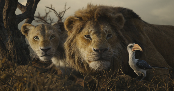 the lion king, musical, computer animated, remake, jon favreau, blu-ray, review, walt disney pictures