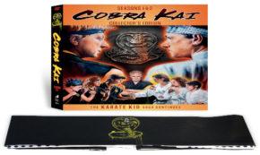 cobra kai, tv show, action, comedy, drama, season 1, season 2, review, dvd, sony pictures home entertainment