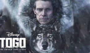 togo, drama, willem dafoe, true story, julianne nicholson, review, disney plus
